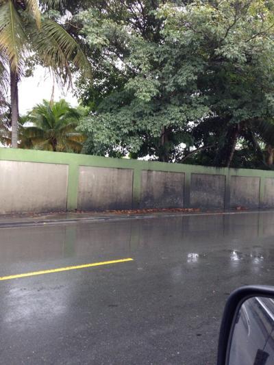 """Pesadilla"" transitar vía en Bayamón"