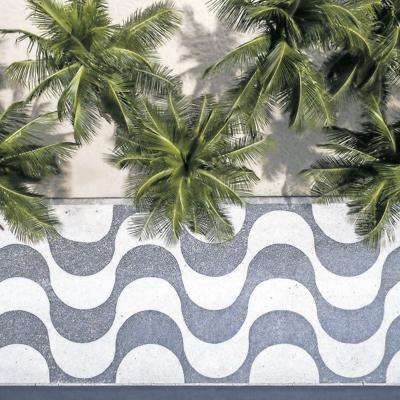 Trabajo de arquitectura paisajista de Roberto Burle Marx