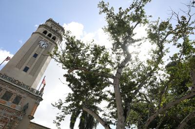 Surgen ocho nombres para sustituir a Jorge Haddock en la presidencia de la Universidad de Puerto Rico