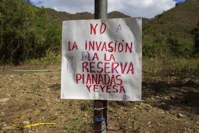 Denuncian construcción en reserva natural