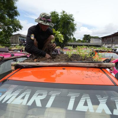 taxis Tailandia con minijardines