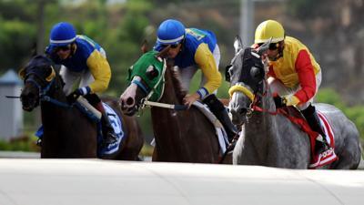 Hipódromo Camarero anuncia reinicio de carreras
