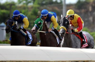 Crean #QueremosCorrer para impulsar reinicio carreras de caballos