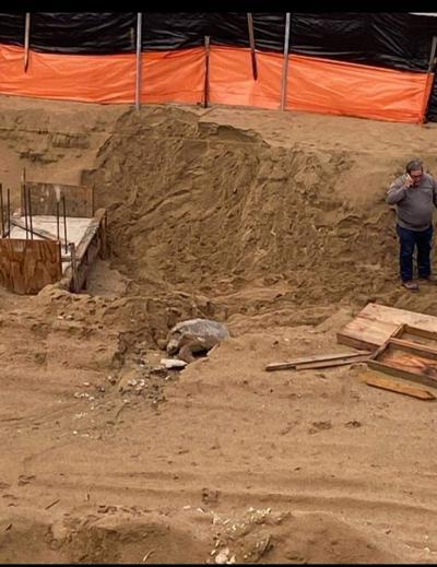 Recursos Naturales ordena cese y desista en área de construcción en condominio de Rincón