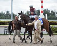 Favorito Tiz The Law en el Florida Derby