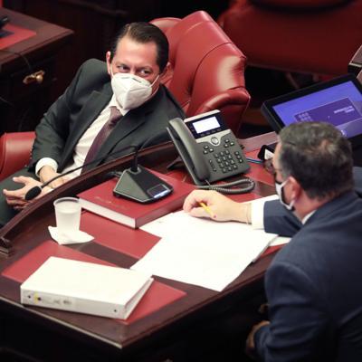 Dalmau pide a la gobernadora que no firme la reforma electoral