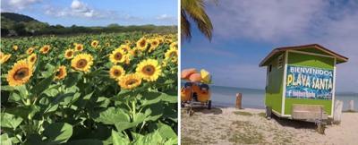 Guánica se prepara para recibir a miles de visitantes para Semana Santa
