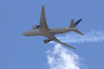 Avión aterriza en Los Ángeles tras impactar ave con turbina