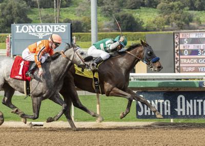 Muere otro caballo en el hipódromo de Santa Anita