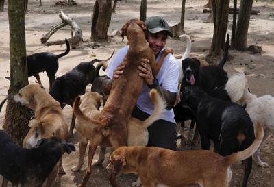 Animales huracán Delta México