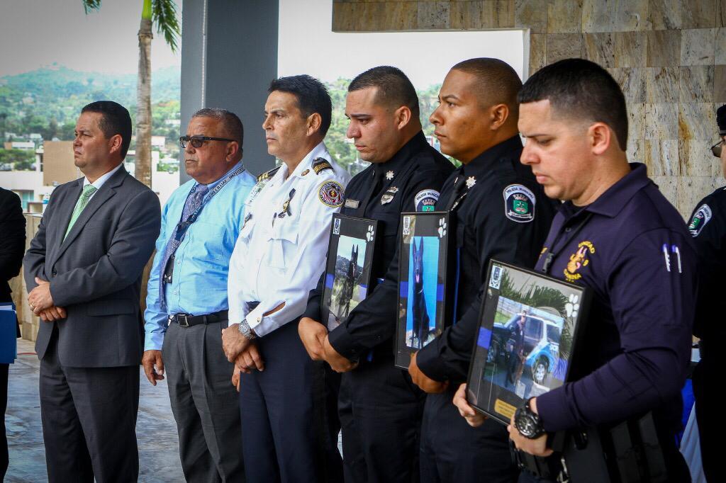 Rinden honor póstumo a agentes K-9 de la Policía Municipal de Guaynabo