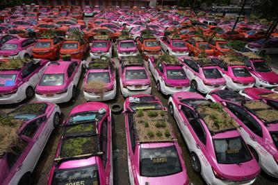 """Taxistas plantan """"jardines"""" en los techos de sus autos a modo de protesta por las restricciones del covid-19"""
