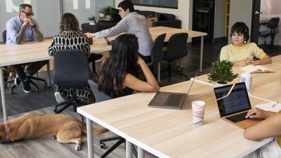Crece la modalidad del 'coworking' en la Isla