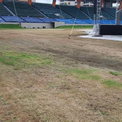 Dejan en mal estado césped del estadio Juan Ramón Loubriel