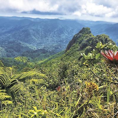 Explora El Yunque a lo 'extreme'