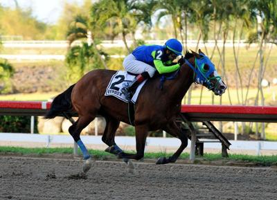 Demasiado superior Ledoux en el Derby Puertorriqueño