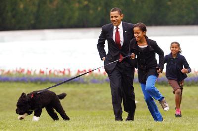 Fallece el perro de la familia Obama