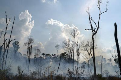 BRASIL-BOLSONARO CONTRA LAS ONG