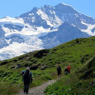 Avioneta se estrella en los Alpes suizos