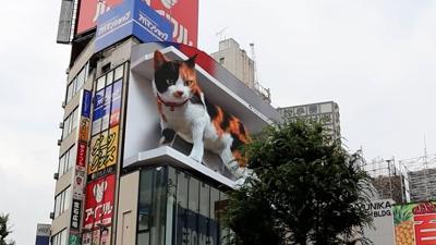 Furor en Tokio por un gato gigante en 3D que tiene vida propia
