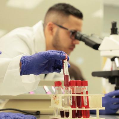 NSF subvenciona becas para estudiantes de ciencia y tecnología