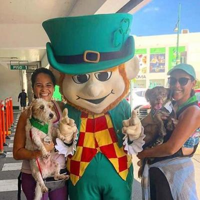Mascotas serán bienvenidas en San Patricio Plaza