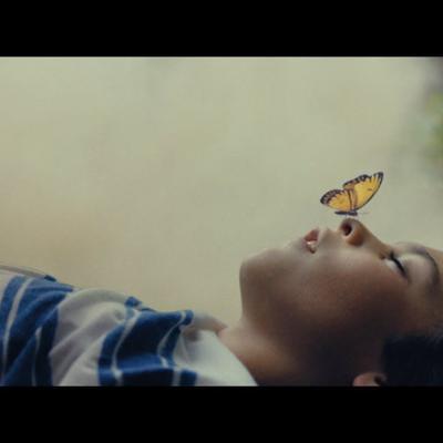 Prótesis Trailer
