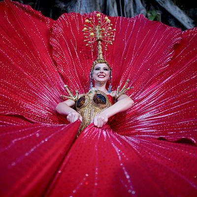 Flor de maga y el coquí en traje típico de Puerto Rico