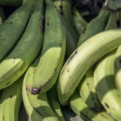 Secretario de Agricultura hace llamado a los supermercados