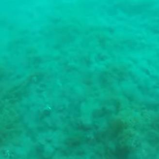 Mueren dos buzos dentro de cueva submarina en Grecia