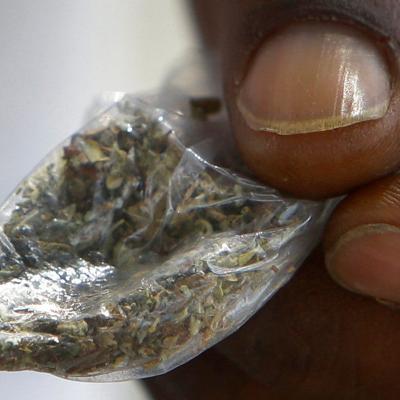 Hombre llama a la policía para reportar robo de marihuana
