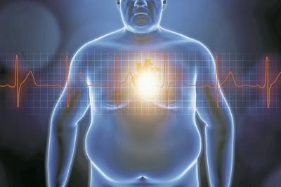 obesidad y el corazón