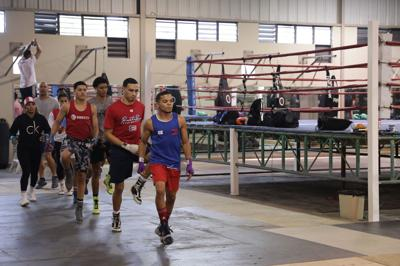 Selección nacional de boxeo