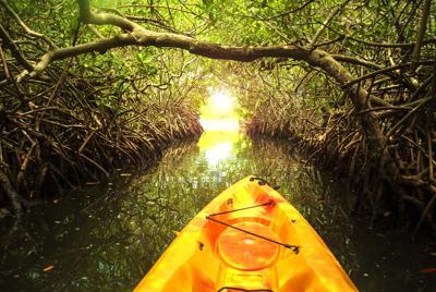 La Parguera:  ecoturismo,  aventura y más