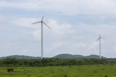 Próxima la reconstrucción del proyecto de molinos de viento en Naguabo