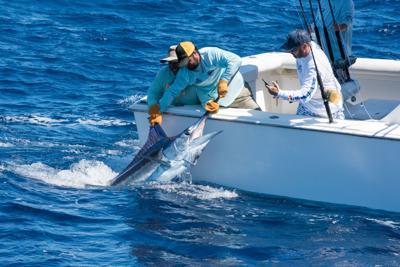 Abre la edición 66 del Torneo Internacional de Pesca