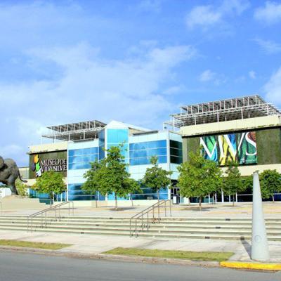 El Museo de Vida Silvestre será el hogar del Comedor de la Kennedy
