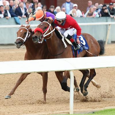 Espectacular victoria de Letruska en el Apple Blossom