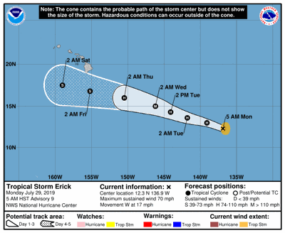 Tormenta tropical Erick cobra fuerza y avanza hacia Hawai