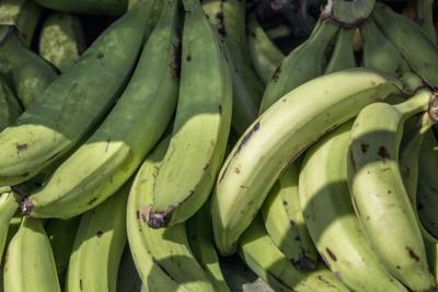 El secretario de Agricultura pide a los supermercados que ayuden a las fincas
