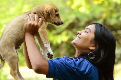 Hermosas mascotas para adopción