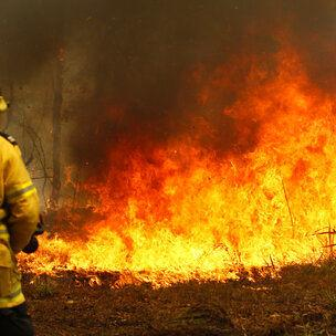 Estado australiano declara emergencia por incendios forestales