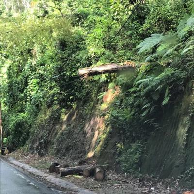 Advierten peligro de colapso de carretera en Guaynabo