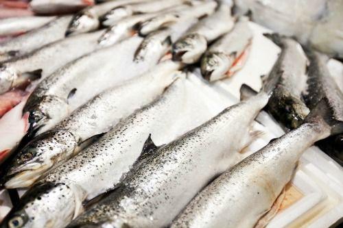 Ecuador protesta por pesca en China