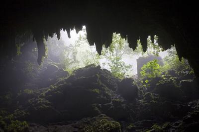 Desde hoy podrás visitar Las Cavernas del Río Camuy