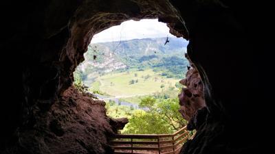 Lo que tienes que saber sobre Cueva León