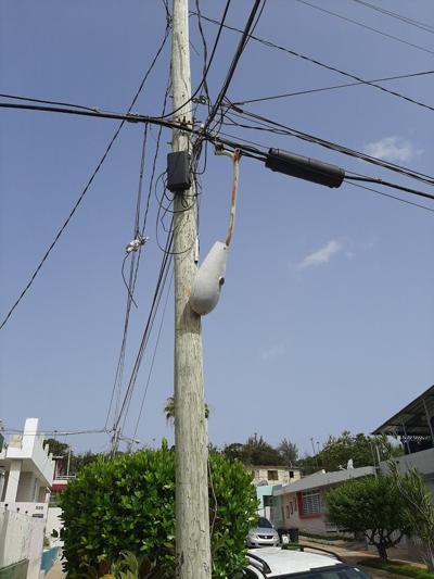 Preocupa deterioro de poste en Arecibo