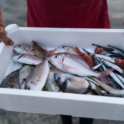 Reclaman ayuda los pescadores