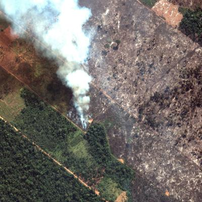 Presidente de Brasil envía ejército a combatir incendios en Amazonía