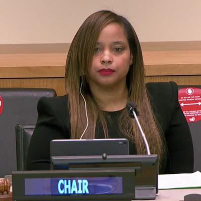Piden al Comité de Descolonización de la ONU que deje el formalismo y trace una estrategia para la independencia de Puerto Rico